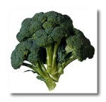 WHY DO I HAVE TO EAT MY BROCCOLI?